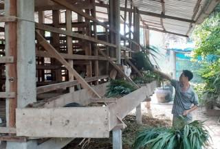 Bình Đại nỗ lực trong công tác giảm nghèo
