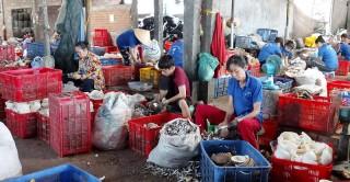 TP. Bến Tre tập trung giảm nghèo bền vững
