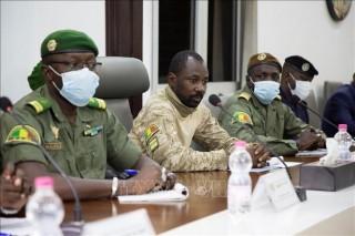 Chính quyền quân sự Mali bắt đầu tiến trình lựa chọn tổng thống lâm thời