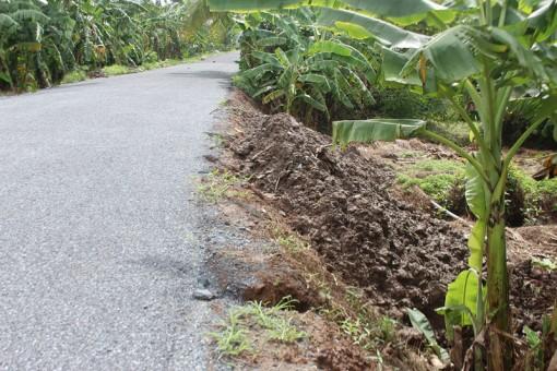 Các đoạn lề đường phục vụ du lịch ven sông Tiền bị xói lở
