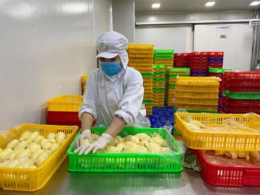 Doanh nghiệp xây dựng chuỗi sản phẩm nông nghiệp chủ lực