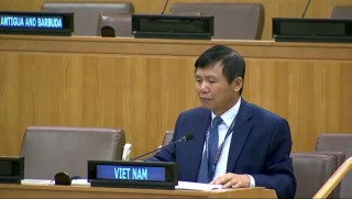 Việt Nam đại diện ASEAN kêu gọi hợp tác quốc tế thúc đẩy phổ cập vaccine chống COVID-19