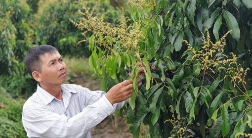 Anh Nguyễn Hữu Thanh - Nông dân xuất sắc Việt Nam năm 2020