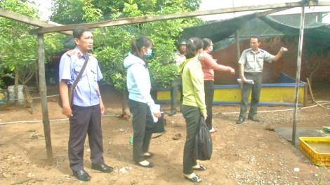 Thạnh Phú cưỡng chế kê biên quyền sử dụng đất và tài sản gắn liền với đất