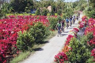 Định hướng phát triển du lịch thành ngành kinh tế mũi nhọn của tỉnh