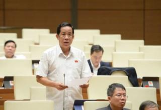 Đại biểu Đặng Thuần Phong góp ý dự thảo Luật sửa đổi, bổ sung một số điều của Luật Xử lý vi phạm hành chính