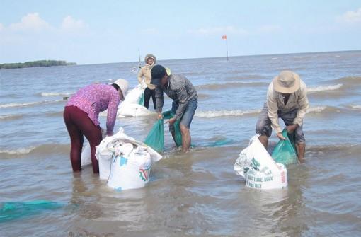 Hợp tác xã thủy sản Đồng Tâm khai thác nghêu doanh thu đạt hơn 30 tỷ đồng