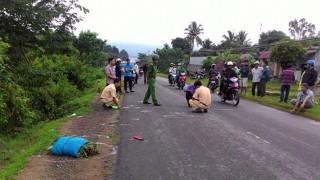 Tai nạn giao thông làm hai người chết