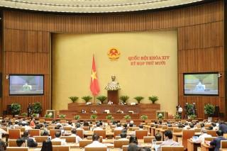 Quốc hội thảo luận về dự án Luật Phòng chống ma túy (sửa đổi)