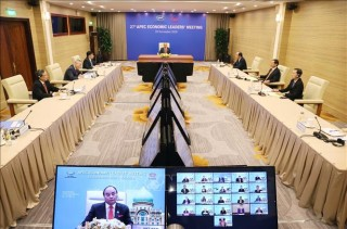 Khai mạc Hội nghị Cấp cao APEC lần thứ 27