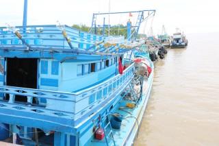 Xử phạt 8 chủ tàu cá với số tiền 6,6 tỷ đồng