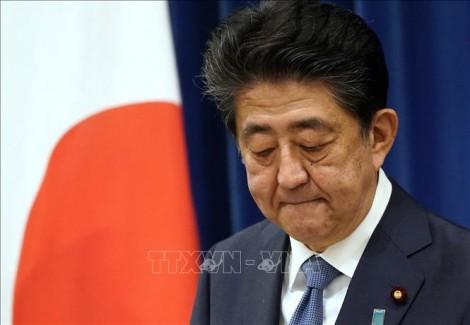 Công tố viên Nhật Bản muốn thẩm vấn cựu Thủ tướng Shinzo Abe về bê bối thu chi