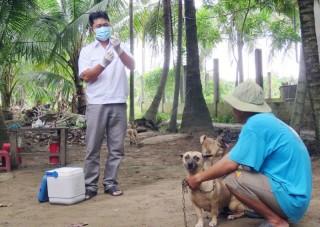 Chủ động tiêm ngừa vắc-xin phòng bệnh dại