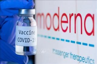 Mỹ cấp phép sử dụng khẩn cấp vaccine ngừa COVID-19 của Moderna