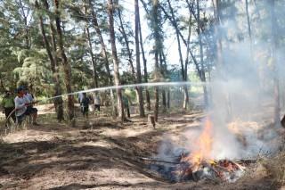 Nguy cơ xảy ra cháy rừng cao