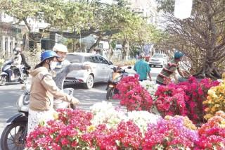 Việc buôn bán cây kiểng, hoa cảnh vẫn hoạt động bình thường trên toàn tỉnh