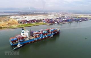 UKVFTA thúc đẩy đà tăng trưởng thương mại Việt Nam-Vương quốc Anh