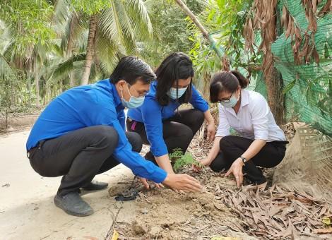 Đoàn Khối Cơ quan – Doanh nghiệp tỉnh ra quân trồng cây tại huyện Bình Đại
