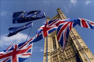 Thương mại Anh - EU hậu Brexit sụt giảm mạnh trong tháng 1