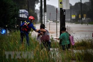 Hàng trăm người dân Australia sơ tán khẩn cấp do mưa lũ nghiêm trọng