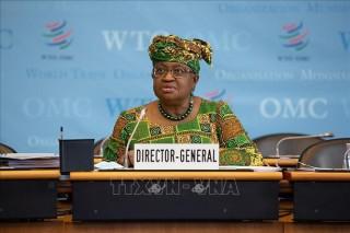 Nhóm Ottawa thảo luận về cải cách WTO