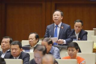 Đại biểu Lưu Bình Nhưỡng thảo luận dự thảo báo cáo công tác nhiệm kỳ của khóa XIV Quốc hội