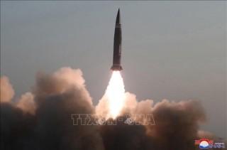 Thượng đỉnh Mỹ - Nhật dự kiến thảo luận vấn đề hạt nhân Triều Tiên