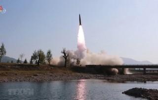 Nhật Bản-Hàn Quốc tái khẳng định hợp tác ba bên với Mỹ vì hòa bình