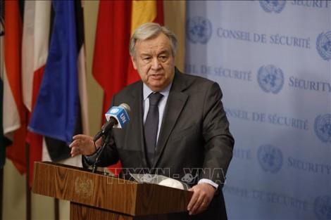 Liên hợp quốc nêu các biện pháp đồng bộ hỗ trợ phục hồi sau đại dịch COVID-19