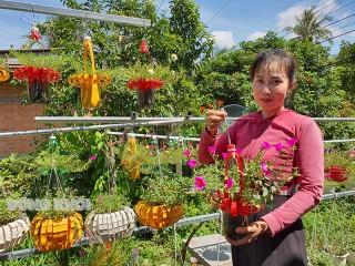 Độc đáo vườn hoa tái chế ở Chợ Lách