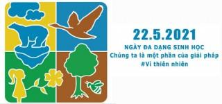 Tuyên truyền, hưởng ứng Ngày quốc tế đa dạng sinh học