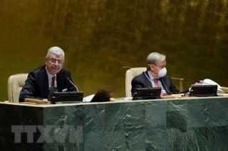 Liên hợp quốc công bố thành viên mới Hội đồng Kinh tế-Xã hội