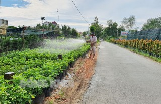 Chợ Lách hướng tới xây dựng huyện nông thôn mới nâng cao, kiểu mẫu