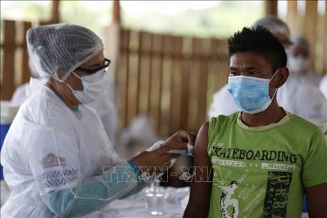 Sưu tầm - Thế giới vượt 178 triệu ca bệnh; Ca mắc và tử vong mới ở Brazil cao nhất toàn cầu