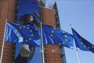 Diễn biến mới về vấn đề bản quyền ở các nước EU
