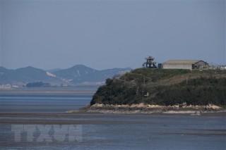 Hàn Quốc chưa tính đến việc cử đặc phái viên tới Triều Tiên