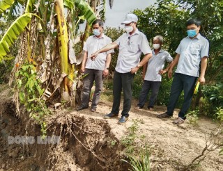 Lãnh đạo huyện Bình Đại khảo sát tình hình sạt lỡ đê bao xã Tam Hiệp