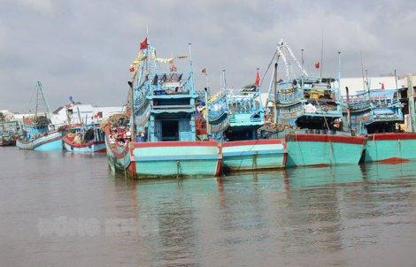 Tăng cường phòng cháy và chữa cháy đối với tàu cá, cảng cá và các khu neo đậu