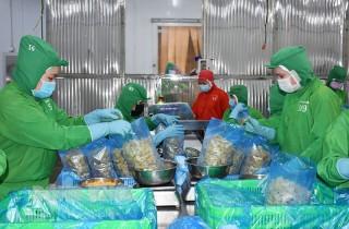 Doanh nghiệp sản xuất an toàn trong điều kiện bình thường mới