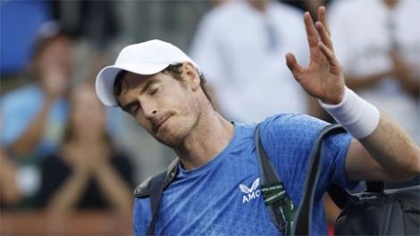Andy Murray bị loại trước thềm tứ kết ở Antwerp